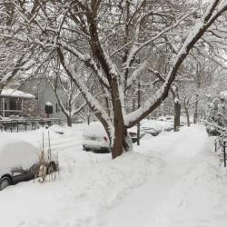 Heavy snowfall in a Chicago neighborhood