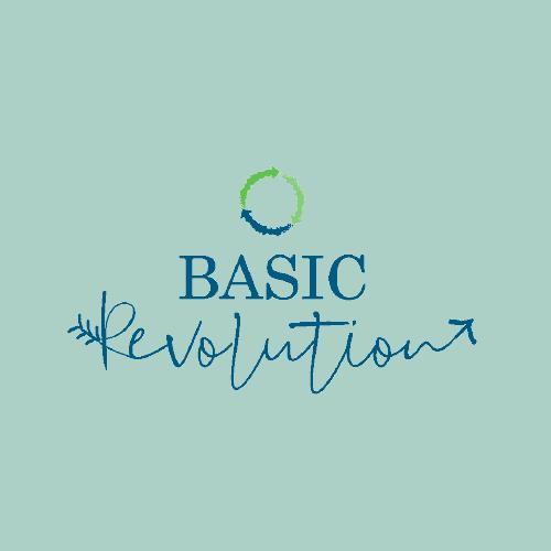 Basic Revolution