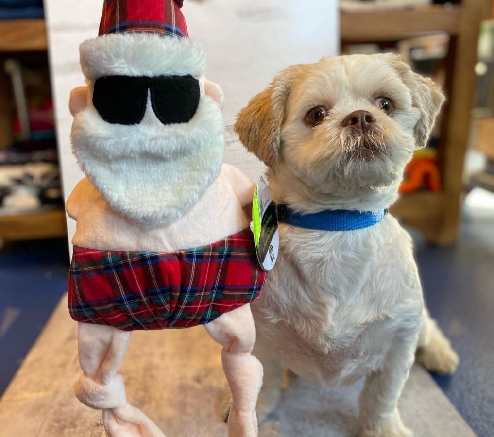 Urban Pooch holiday dog toys