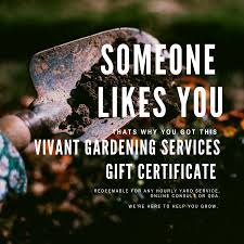 A holiday gift certificate from Vivant Gardening for the green thumb in your life