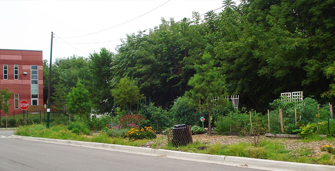 A picture of garden beds and wild flowers at the Bowmanville Gateway Gardens