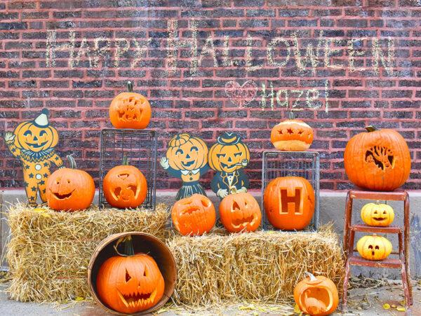 Hazel's pumpkin patch for Halloween in Ravenswood